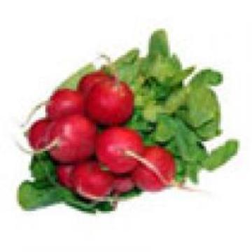 Planta De Exterior - Plantas De Huerto - Rabanito Rojo B12