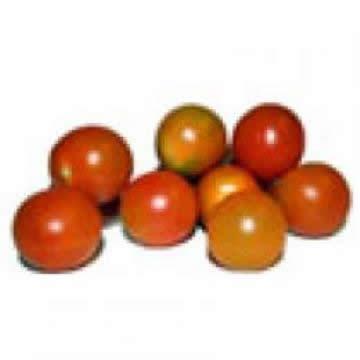 Planta De Exterior - Plantas De Huerto - Tomate Cherry Lindo Bandeja 6 Plantones