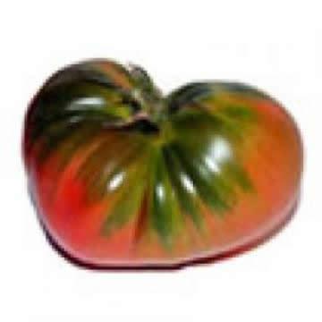 Planta De Exterior - Plantas De Huerto - Tomate Raf Supremo Bandeja 12 Plantones