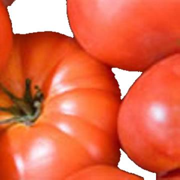Planta De Exterior - Plantas De Huerto - Tomate Variedades