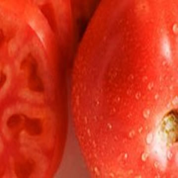 Planta De Exterior - Plantas De Huerto - Tomate Suelo Salmorejo Bandeja 12 Plantones