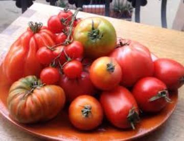 Planta De Exterior - Plantas De Huerto Ecologicas - Tomates Ecologicos Variedades